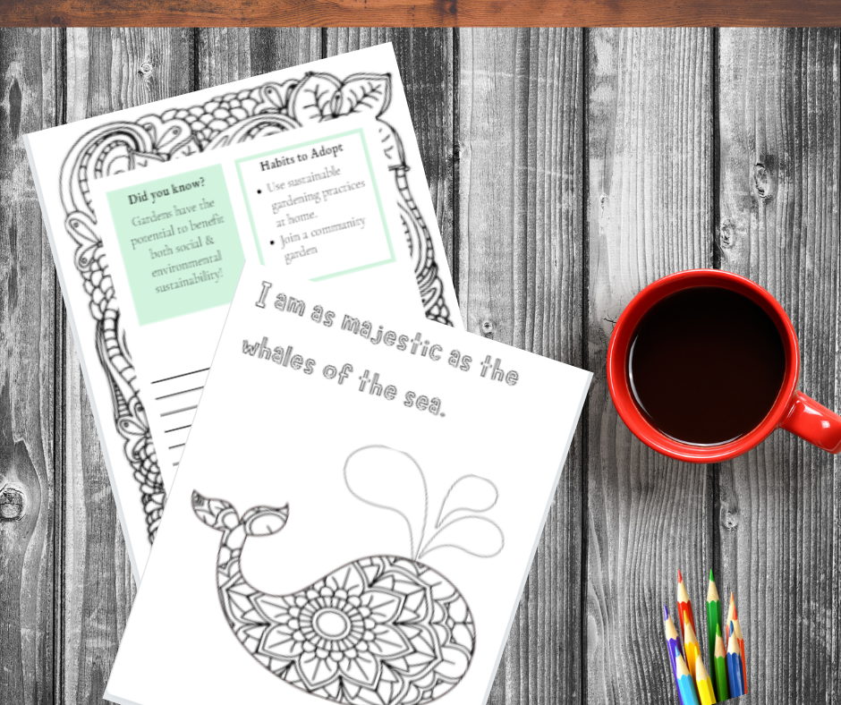 Desk with red coffee cup, colored pencils, and two sample pages of the Coloring, Affirmations, and Reflections for the Eco-minded book