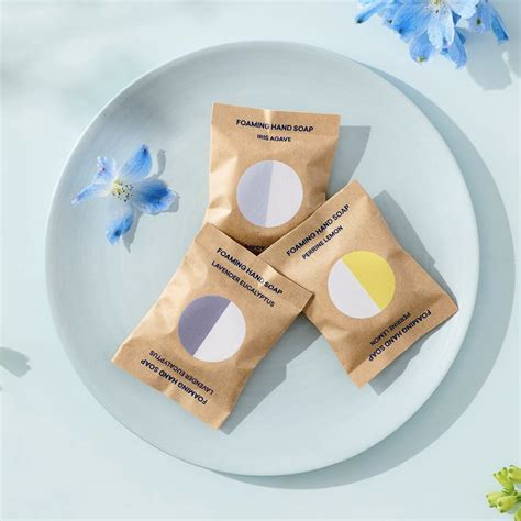Blueland Soap Refill for your Eco-conscious Household